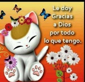 Imagen De Amor Con Frase De Dar Gracias A Dios