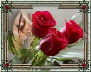 amor-en-rosas-300x238.jpg