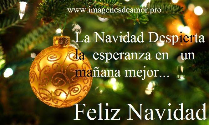 Descargar Felicitaciones De Navidad Y Ano Nuevo Gratis.16 Tarjetas De Navidad Originales Para Descargar Gratis