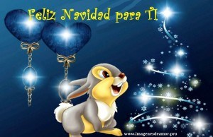 conejo_navidadd-300x194.jpg