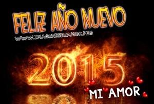 fuegos-feliz-ano-nuevo-2015-mi-amor-300x203.jpg