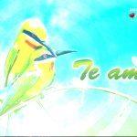imagenes-de-aves-enamoradas-2-150x150.jpg