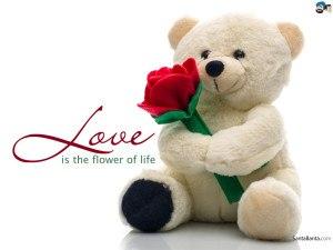 love-peluche-300x225.jpg