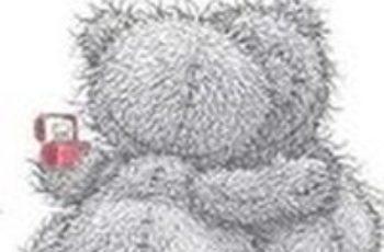 osos con mensajes de amor