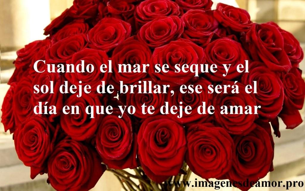 regalo-rosas-1024x640.jpg